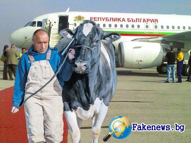 правителственият самолет на България
