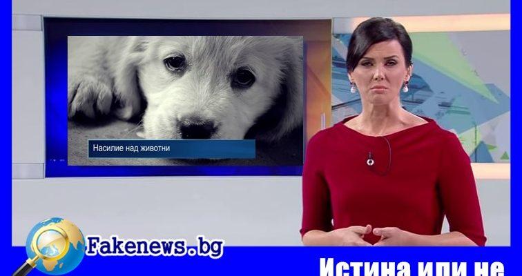 Истина или не ! Зелените искат кастрация на изверг +ВИДЕО Стефан Пройнов