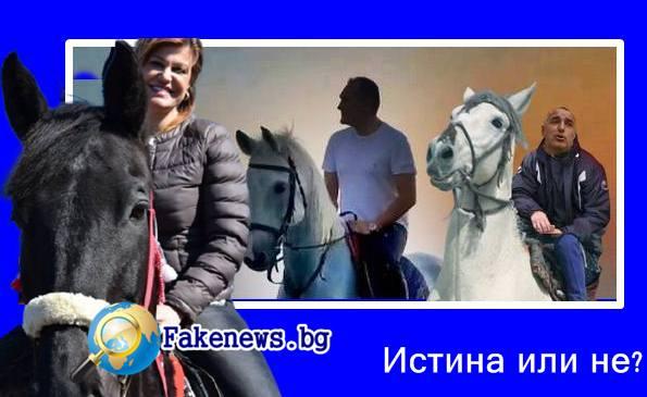 Истина или не! Бойко Борисов дали ще открадне Белият Кон на Васил Божков, щото черната кобилка на Корнелия е бременна?